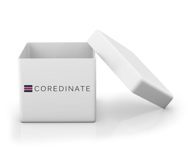 coredinate-shop-logo